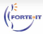 Forte IT ведущий разработчик IVR систем