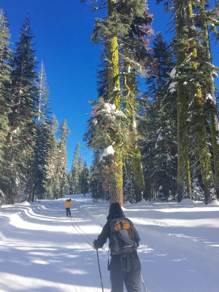 yosemite-winter-forteebello-skiing