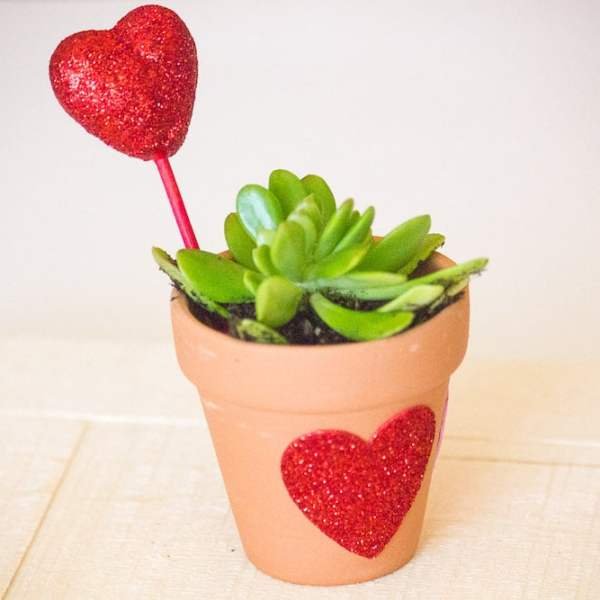 DIY Valentine's Craft for Kids – Let Love Grow Succulent Heart Flower Pot