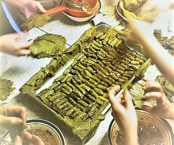 True Greek Vegetarian Dolmades