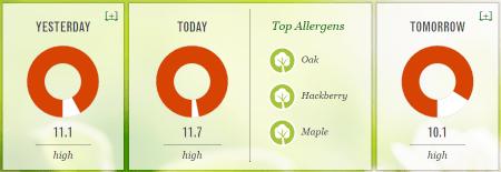 Pollen.com details on Dallas, TX