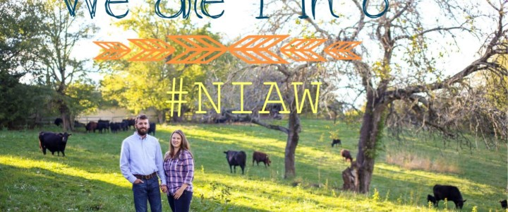 NIAW 2016 is Here Again!