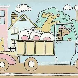 Children's Vintage Wallpaper Border Animals Cars Pink Blue GH9043 FREE Ship