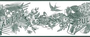 green botanical floral wallpaper border, off-white, bulbs, plants, lilies, morning glories, anemones, bee, skep, bird, solarium, garden shed