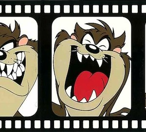 Looney Tunes Kids Wallpaper Border Childrens Tasmanian Devil TTFS2002B FREE Ship