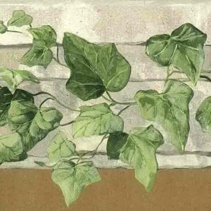 Green Ivy Wallpaper Border Kitchen Cutout Taupe Stone FR5083B FREE Ship
