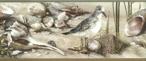 seashells wallpaper border, nautical, seabirds, sandpipers, seagulls, sand, beige, taupe, brown, cream
