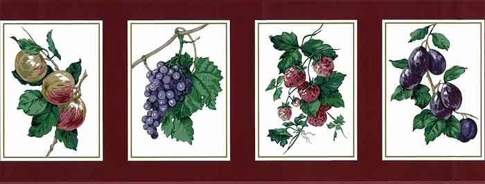 Vintage Waverly Framed Fruit Wallpaper Border in Cranberry Red