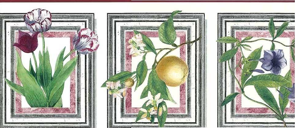 botanical Waverly vintage Wallpaper Border, pink, green, white, Audobon