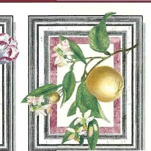 Botanical Waverly Vintage Wallpaper Border Floral Kitchen 571512B FREE Ship