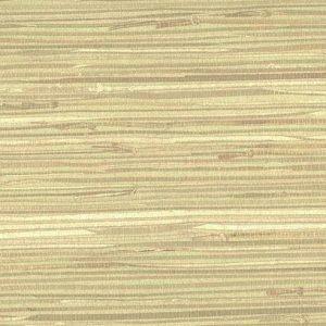 Green Beige Natural Grasscloth Wallpaper NZ0780 Double Rolls