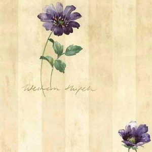 Script Striped Vintage Wallpaper Floral Beige BR28720 Double Rolls