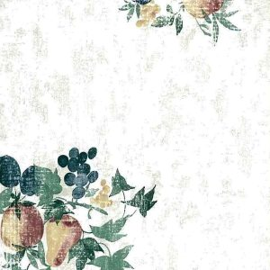 Fruit Ivy Wallpaper Kitchen Green Blue Matching Border CK3444 D/Rs