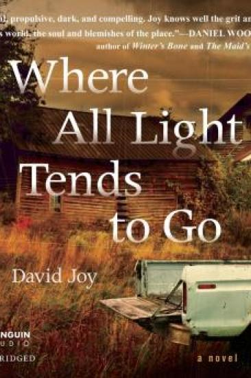 Audiobook Review – Where All Light Tends to Go by David Joy