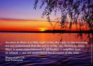Quotes-by-Srila-Prabhupada-on-Presence-of-The-Soul