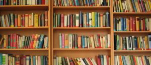 FI Bookshelves