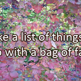 Writing Prompt for October 23: Bag of Leaves
