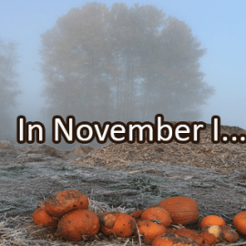 Writing Prompt for November 30: November