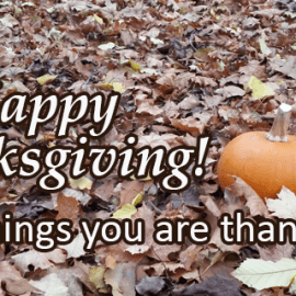 Writing Prompt for November 22-23: Thanksgiving