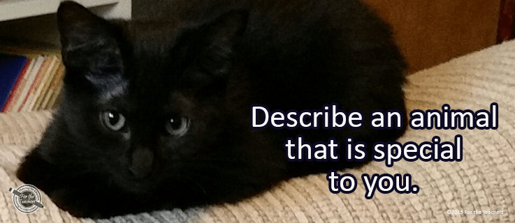 Featured_Journal_Dec142015