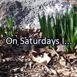 Writing Prompt for March 18: Saturdays