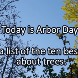 Writing Prompt for April 26: Arbor Day