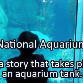 Writing Prompt for June 13: Aquariums