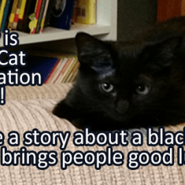 Writing Prompt for August 17: Black Cat