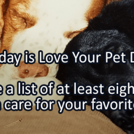 Writing Prompt for February 20: Pets