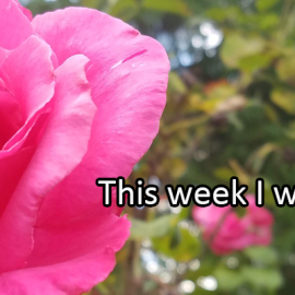 Writing Prompt for July 22: Try This Week