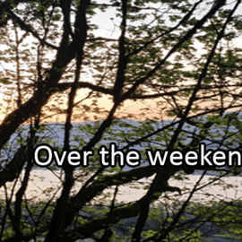 Writing Prompt for August 30: Weekend