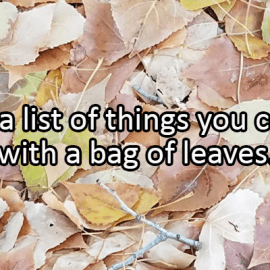 Writing Prompt for October 24: Bag of Leaves