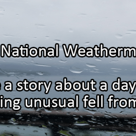 Writing Prompt for February 5: Weatherman Day