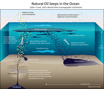 Natural oil seeps oceans