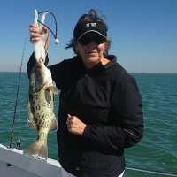 Fort Myers Fishing Report ~ grouper, offshore