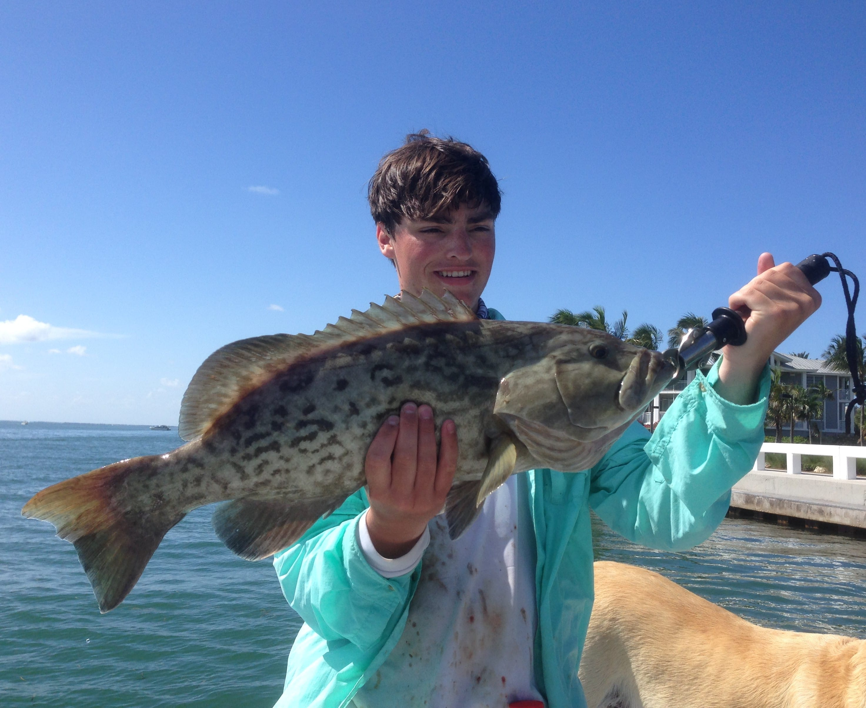 7 4 14 fort myers fishing report grouper fortmyers for Fort myers fishing guides