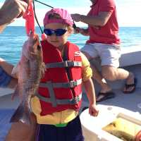 Fort Myers Fishing Report, 2/14/15: Snapper ~ #FortMyers