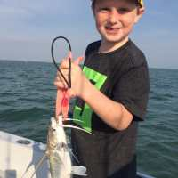 Fort Myers Fishing Report, 3/30/15: Sail Catfish ~ #FortMyers