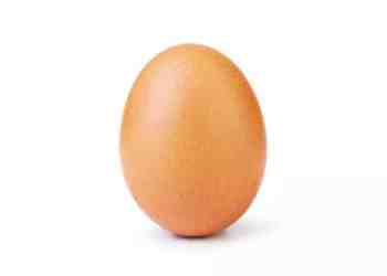 World Gone Mad - Photo Of Egg Is The Most-Liked On Instagram