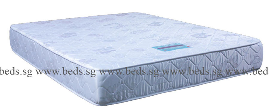 Dolphin 2in1 BackCare Mattress   Furniture   Home D    cor   FortyTwo Maliland Dolphin 2 in 1 Back Care Mattress