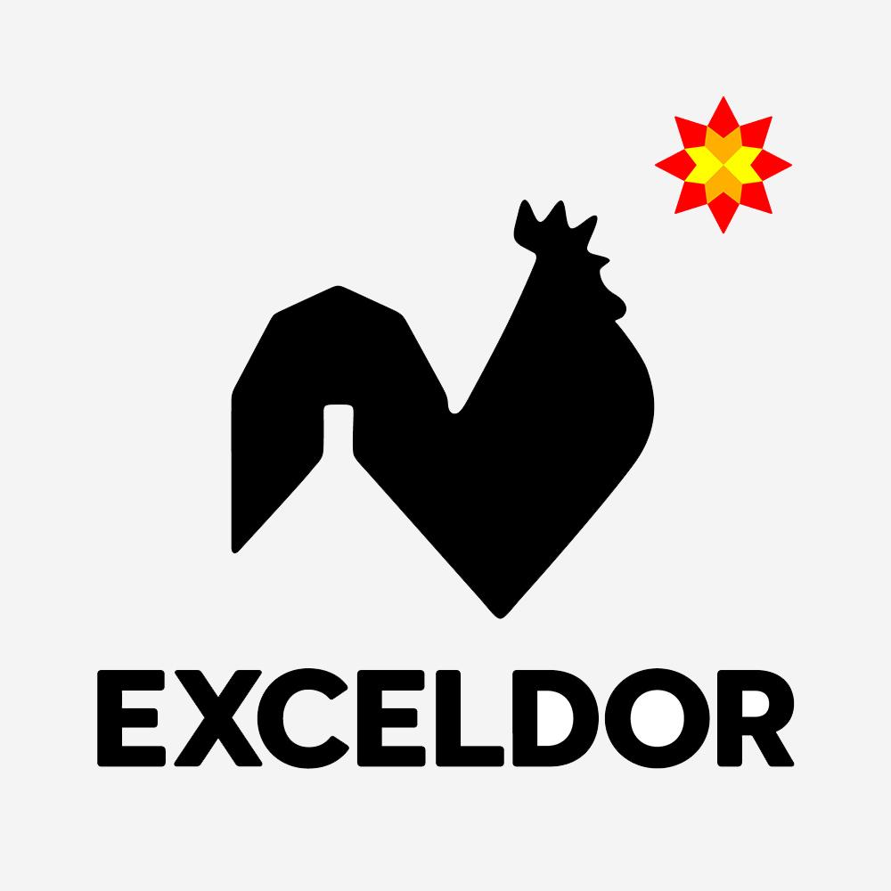Exceldor - partenaire financier