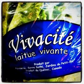 expat-quebec-canada-laitue-vivante-supermarche.jpg