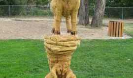 amazing_art_cottonwood_trees_1.jpg