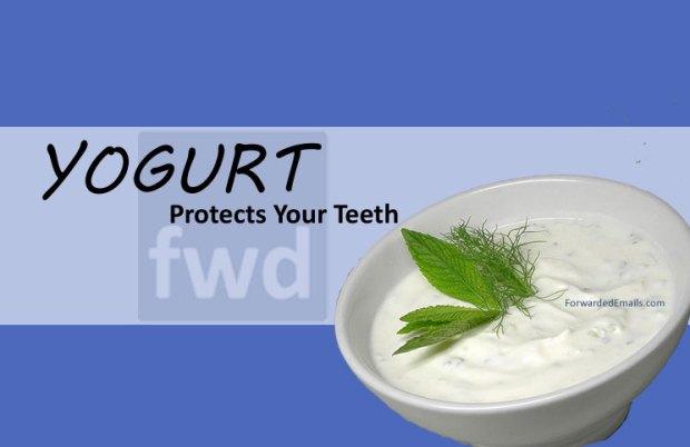 yogurt-protects-your-teeth