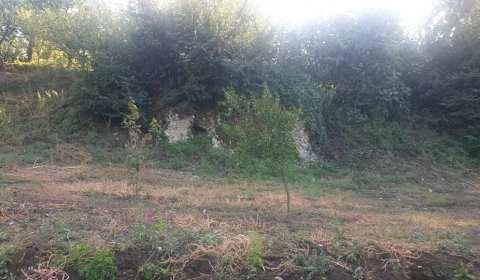 L'ENORME RISORSA Basta spostarsi pochi centinaia di metri dal Teatro ellenistico-romano di Nuceria Alfaterna per rendersi conto dell'enorme potenziale archeologico che ancora nasconde la città di Nuceria. Alcuni reperti spuntano […]