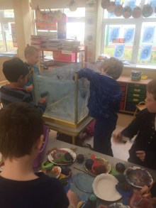 Making Aquarium SI 2018 - 05