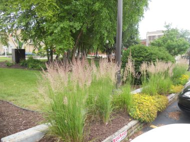 commercial-landscaping-rockford-machesney-park-il-18