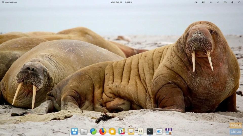 desktop OS 5.0 Juno elemantaris