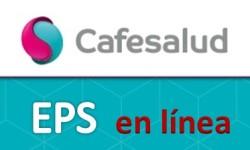 Sacar citas en cafesalud por internet