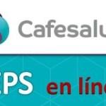 Citas médicas Cafesalud, solicite su cita por internet o teléfono